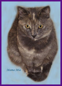 ~Courtesy Listing ~ Mama Mia--Adopted!
