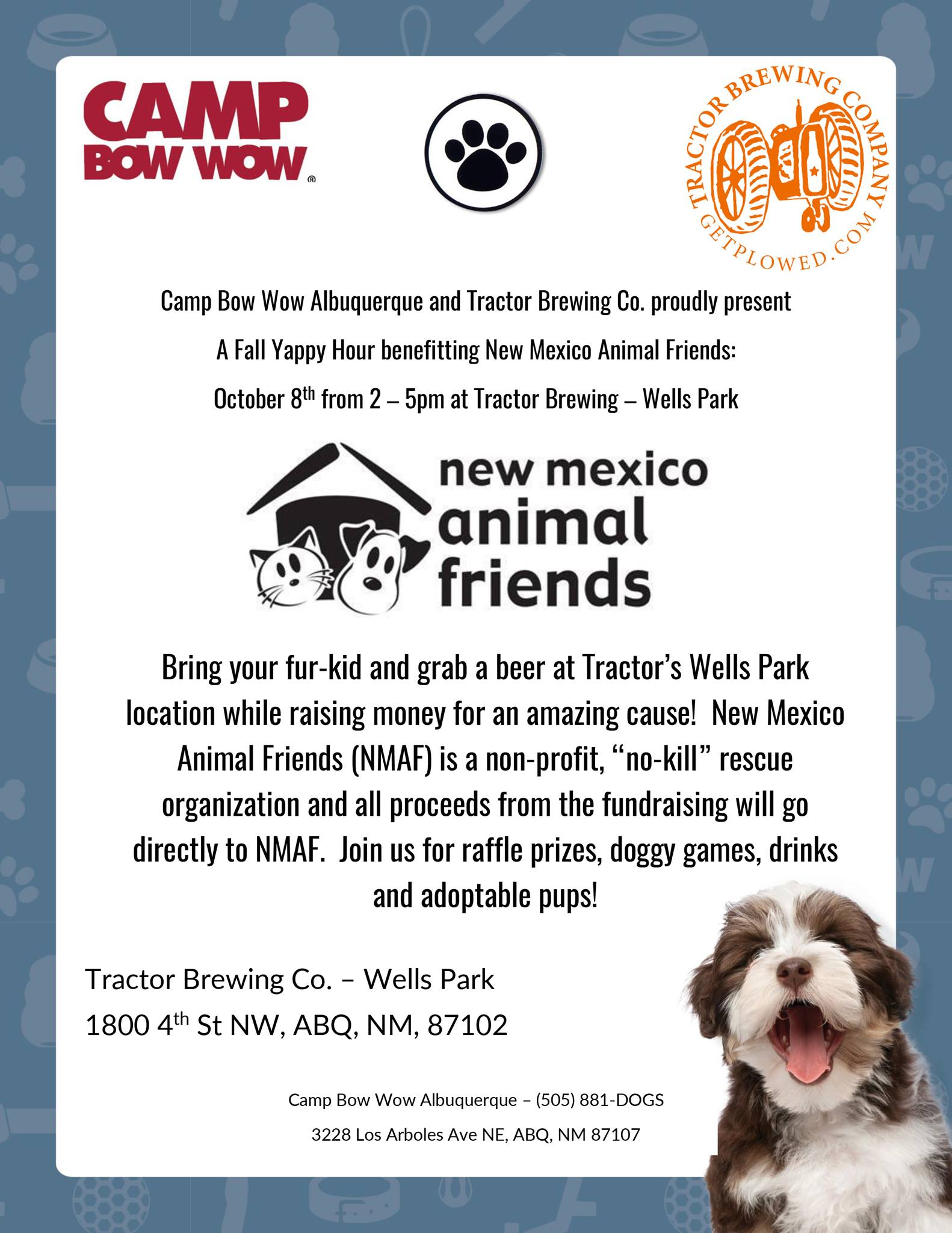 Camp Bow Wow Yappy Hour Flyer