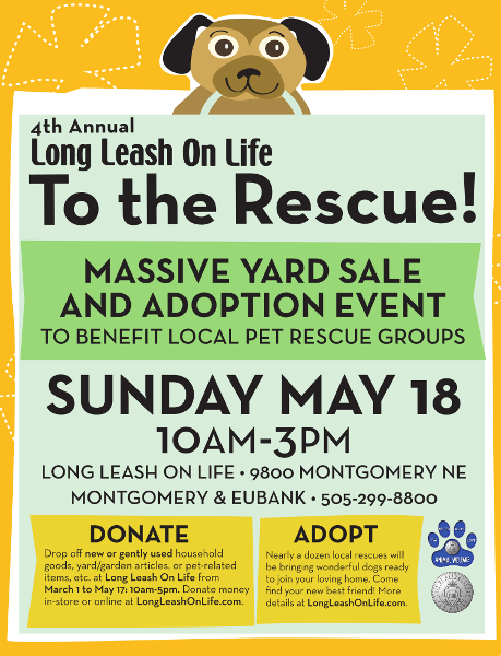 image of To the Rescue flyer