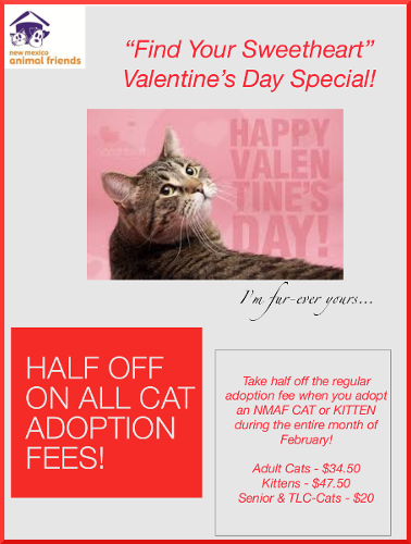 Valentine's Day Special Poster